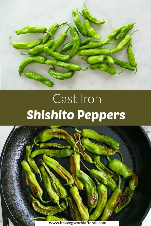 images of shishito peppers separated by a green text box with title
