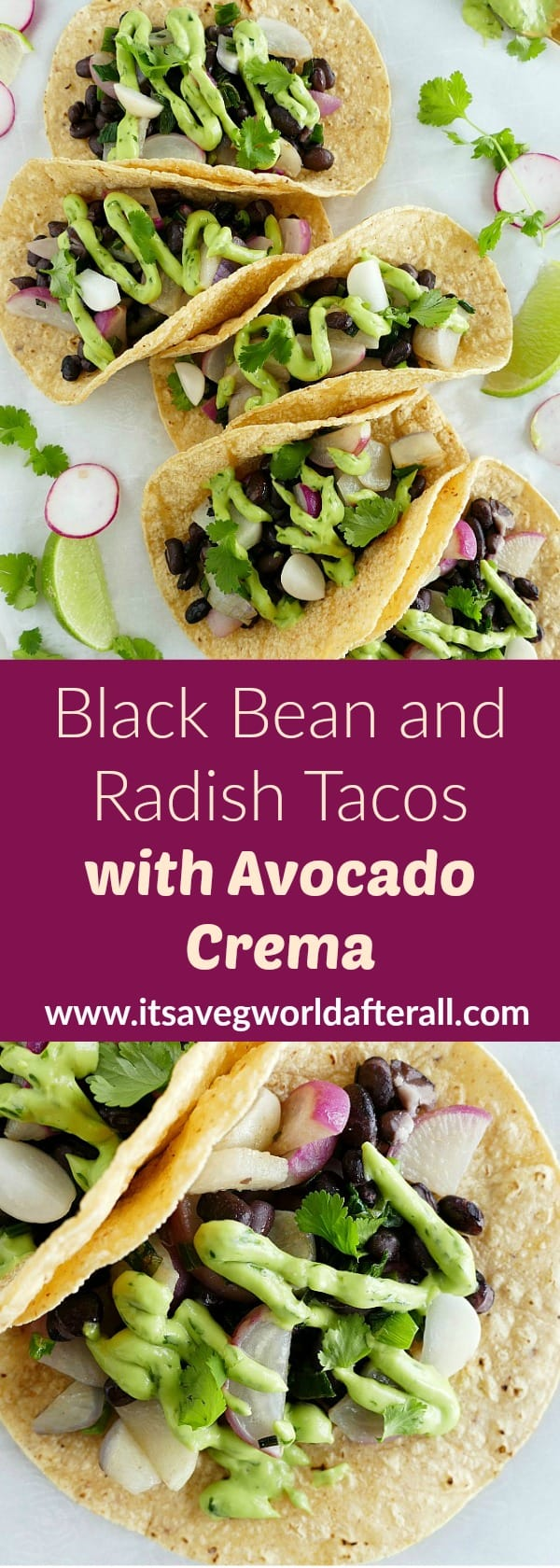 Radish and Black Bean Tacos pin