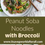 peanut soba noodles pin