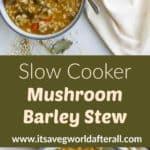 Mushroom Barley Stew pin