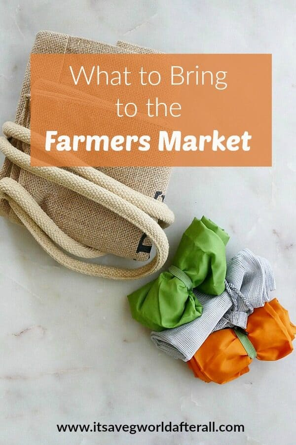 what to bring to the farmers market pin