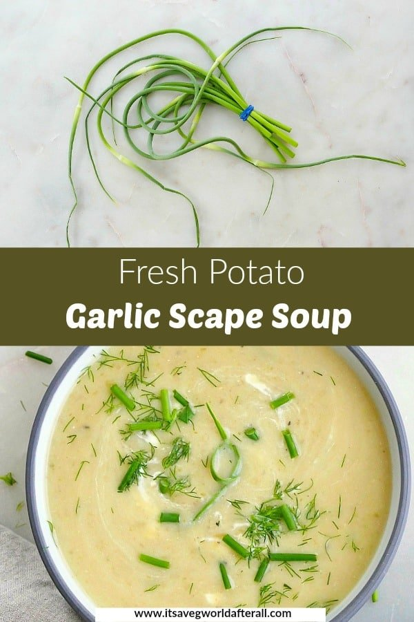 images of garlic scapes and a bowl of garlic scape soup with a green text box in the middle