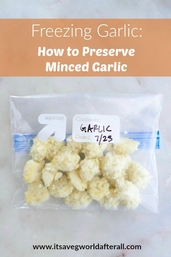 freezing garlic pin