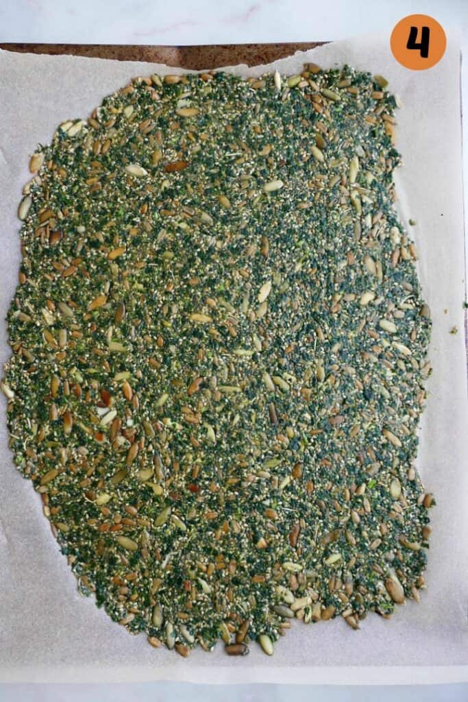 kale crackers spread out on parchment on a baking sheet