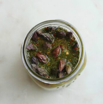 square image of overhead shot of pickled asparagus tips in brine