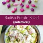 photos of radishes and a bowl of radish potato salad separated by a text box