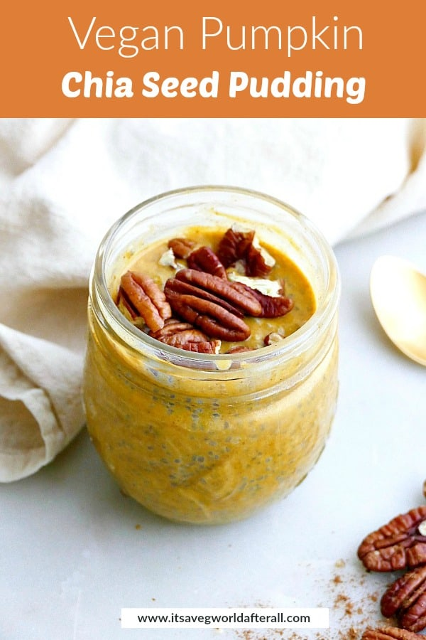 image of chia pudding with text box with recipe title