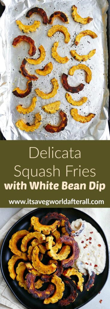 images of baked delicata squash fries on a baking sheet and plate separated by text box with title