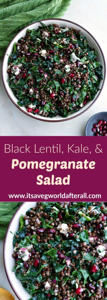 images of black lentil salad separated by text box with recipe title