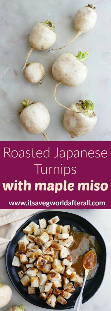 images of raw turnips and roasted miso turnips separated by text box with recipe title