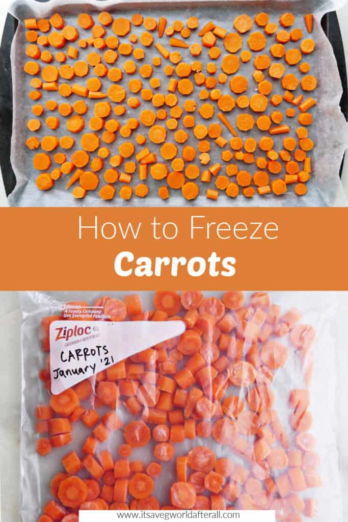 images of frozen carrots separated by text box with post title