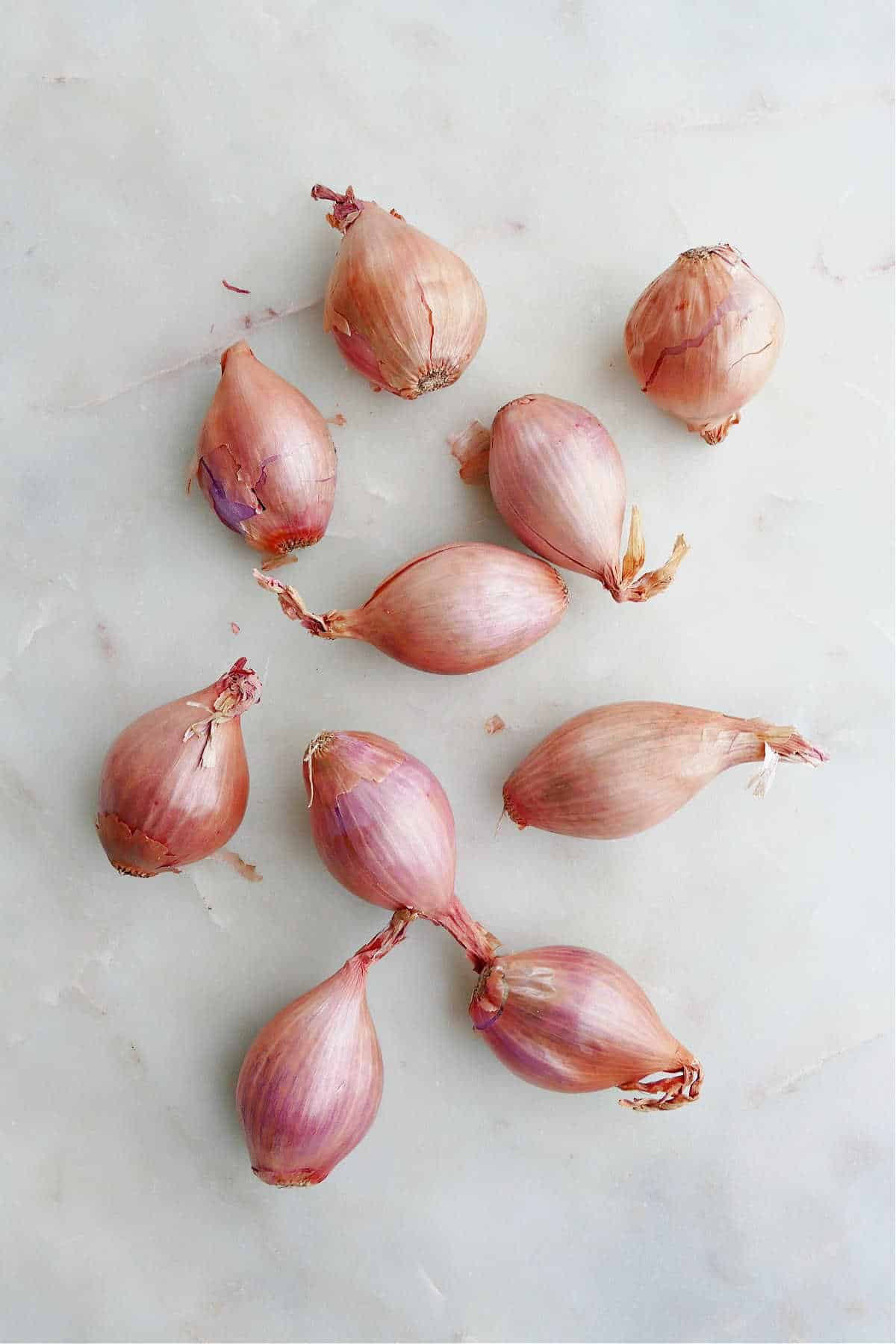 ten shallots spread out next to each other on a white marble counter