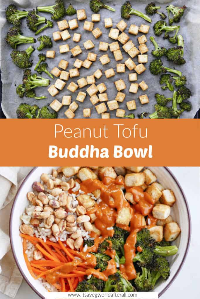 roasted tofu and broccoli and a finished buddha bowl separated by text box