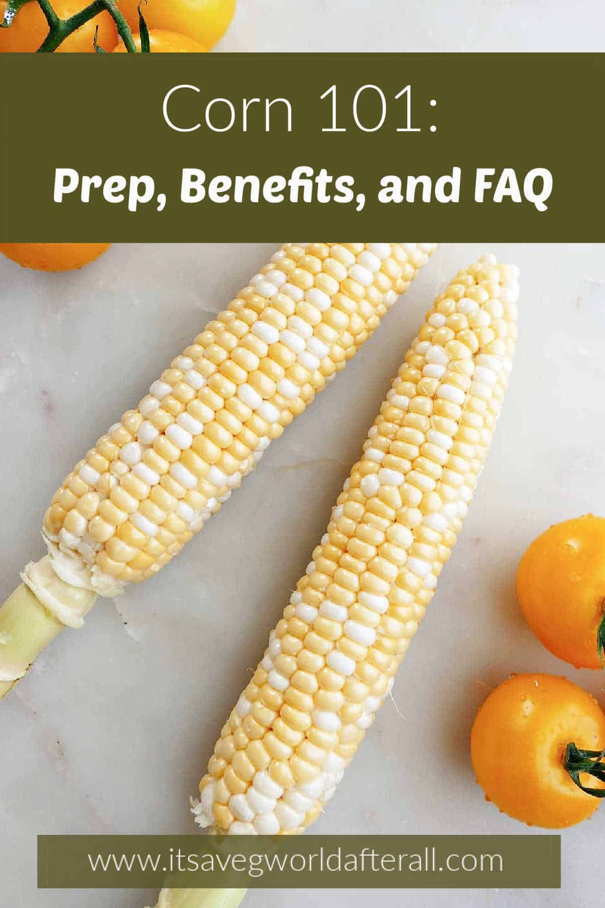 image of corn and tomatoes on a counter with text boxes over the image