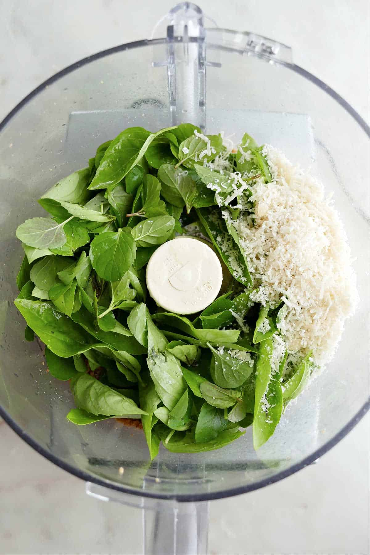 chopped pine nuts, herbs, and cheese in a food processor on a counter