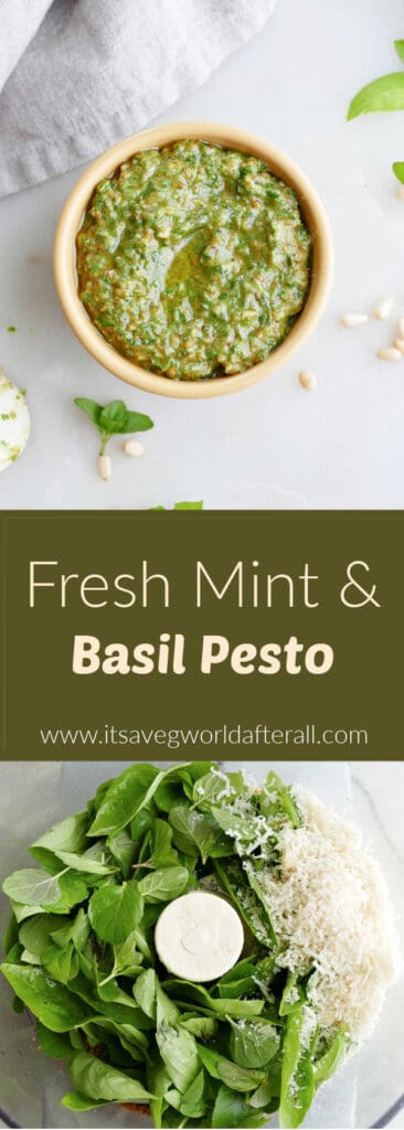 images of mint basil pesto and ingredients separated by text box with recipe and website