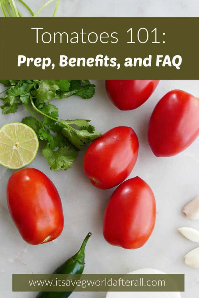 image of tomatoes and salsa ingredients with text boxes with post title and website
