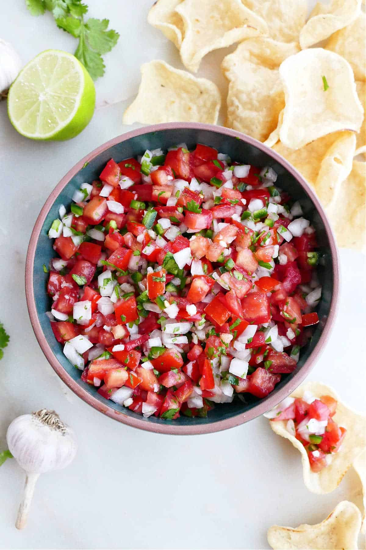 fresh garden salsa in a serving bowl surrounded by tortilla chips and ingredients