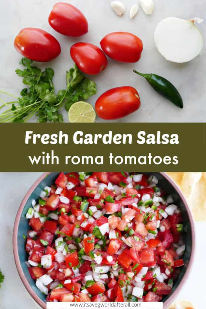 ingredients for garden salsa and salsa in a serving bowl separated by text box with recipe title