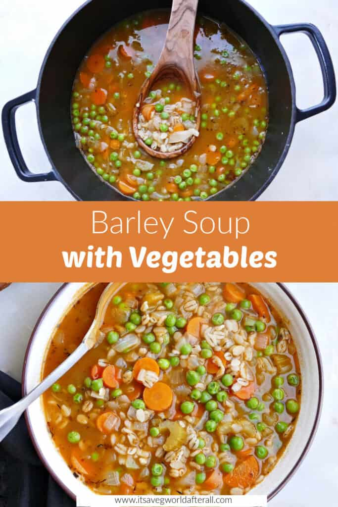 barley vegetable soup in a pot with a ladle and in a serving bowl separated by text box